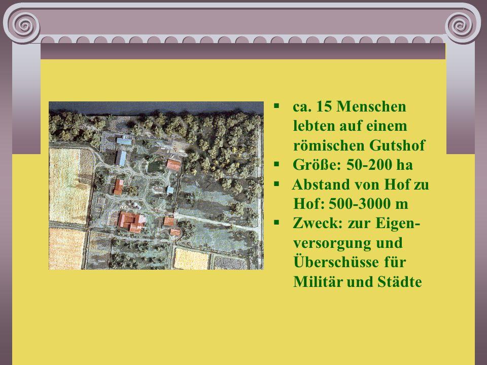 villa rustica  = römischer Gutshof  bestehend aus Wohngebäude, Badehaus, Wirt- schaftsbauten, Viehställen; auch Speicher, Schuppen oder Werkstätten;