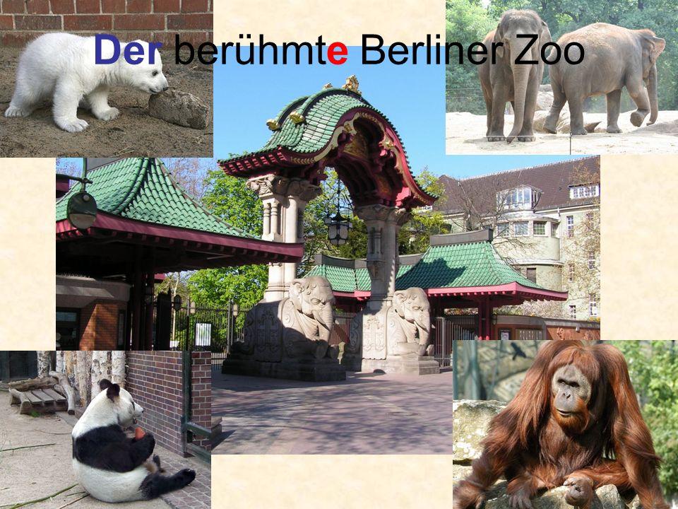 Der berühmte Berliner Zoo