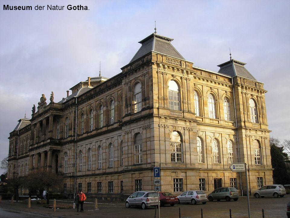 Museum der Natur Gotha.