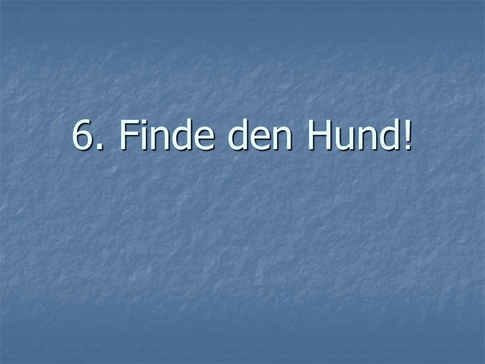 6. Finde den Hund!