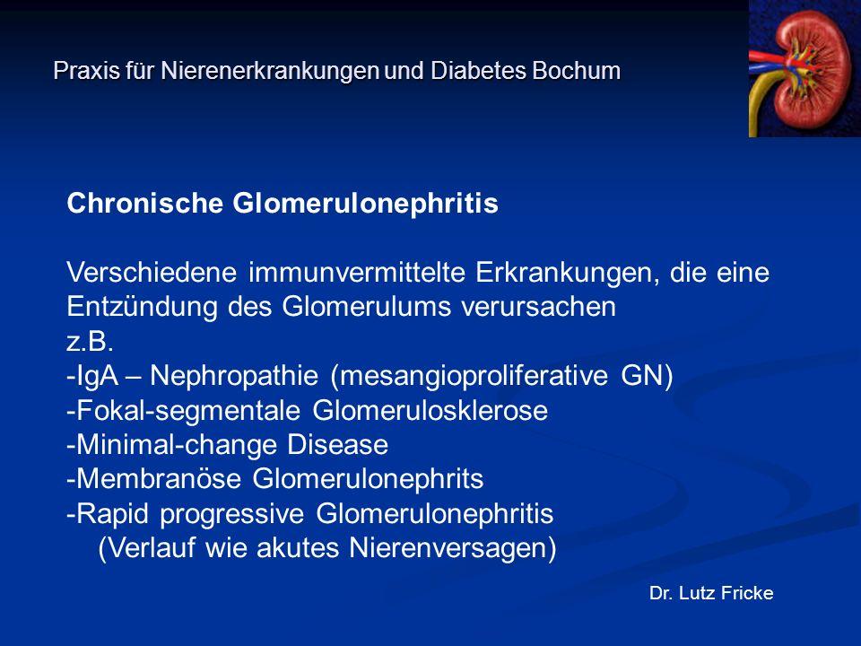 Praxis für Nierenerkrankungen und Diabetes Bochum Dr. Lutz Fricke Chronische Glomerulonephritis Verschiedene immunvermittelte Erkrankungen, die eine E
