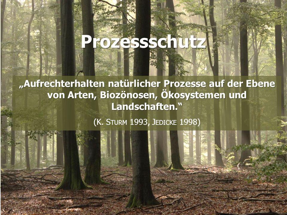 """Konzepte """"Aufrechterhalten natürlicher Prozesse auf der Ebene von Arten, Biozönosen, Ökosystemen und Landschaften. (K."""