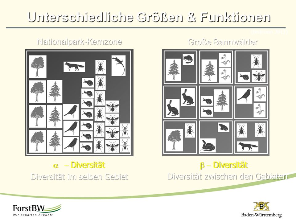 Unterschiedliche Größen & Funktionen (Bollmann 2012)Nationalpark-Kernzone  Diversität Diversität im selben Gebiet Große Bannwälder  Diversität Diversität zwischen den Gebieten