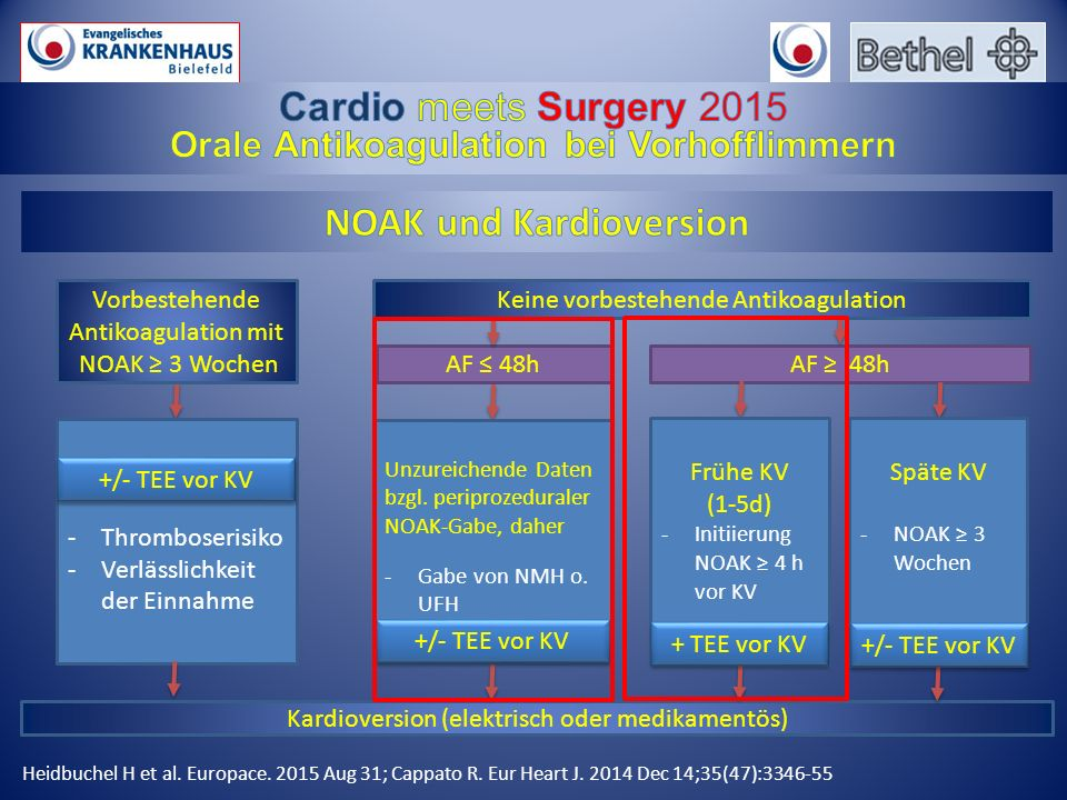 Kardioversion (elektrisch oder medikamentös) Heidbuchel H et al. Europace. 2015 Aug 31; Cappato R. Eur Heart J. 2014 Dec 14;35(47):3346-55 Vorbestehen