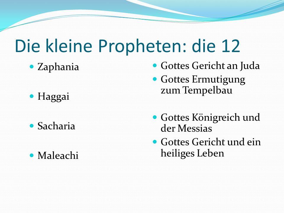 Die kleine Propheten: Die 12 Jona Micha Nahum Habbakuk Gottes Botschaft an Nineveh und der ungehorsame Prophet Gottes Gericht und Gnade an Juda Gottes