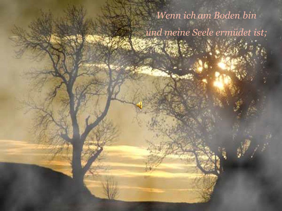 Lied von Jan Werner Danielsen