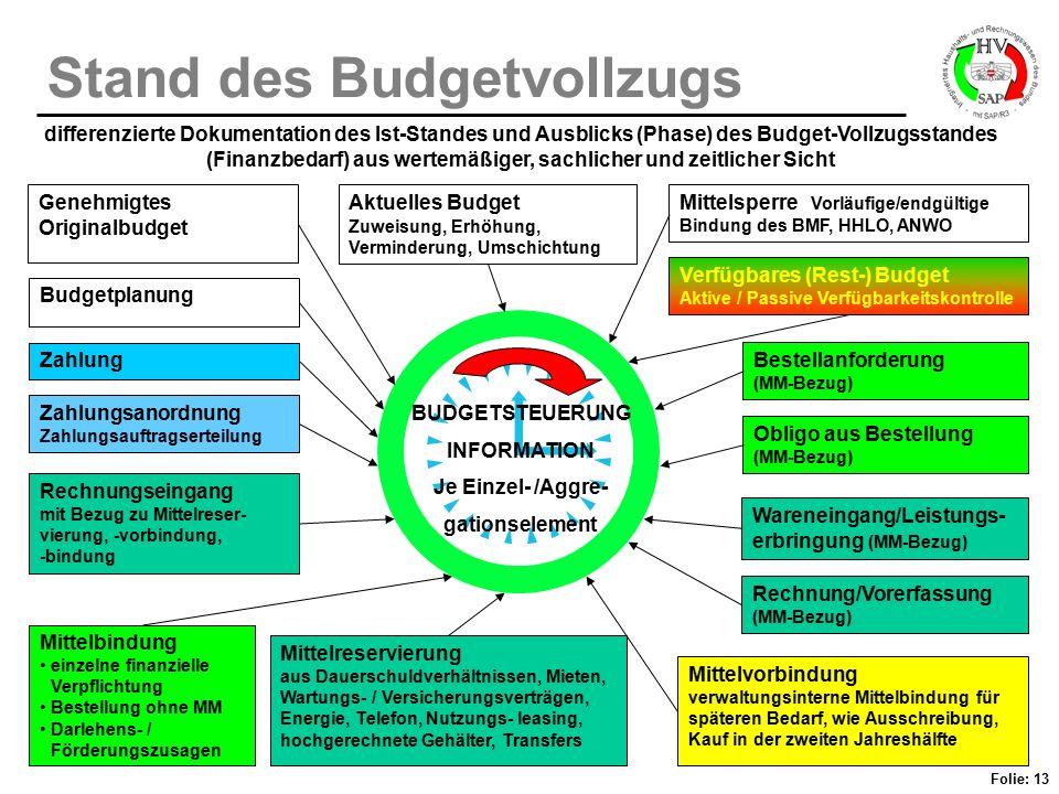 Folie: 13 Stand des Budgetvollzugs differenzierte Dokumentation des Ist-Standes und Ausblicks (Phase) des Budget-Vollzugsstandes (Finanzbedarf) aus we