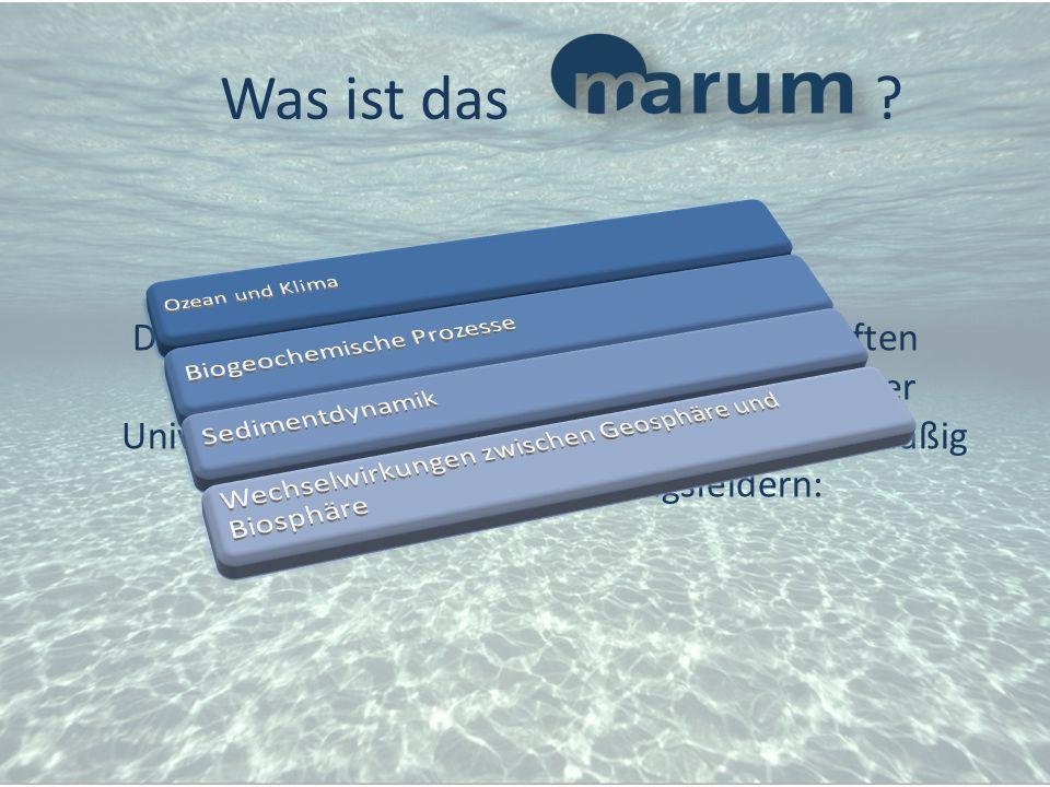 Das Zentrum für Marine Umweltwissenschaften (MARUM) ist eine Forschungseinrichtung der Universität Bremen. Es arbeitet schwerpunktmäßig auf folgenden