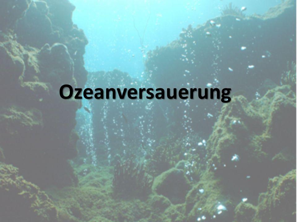 Ozeanversauerung