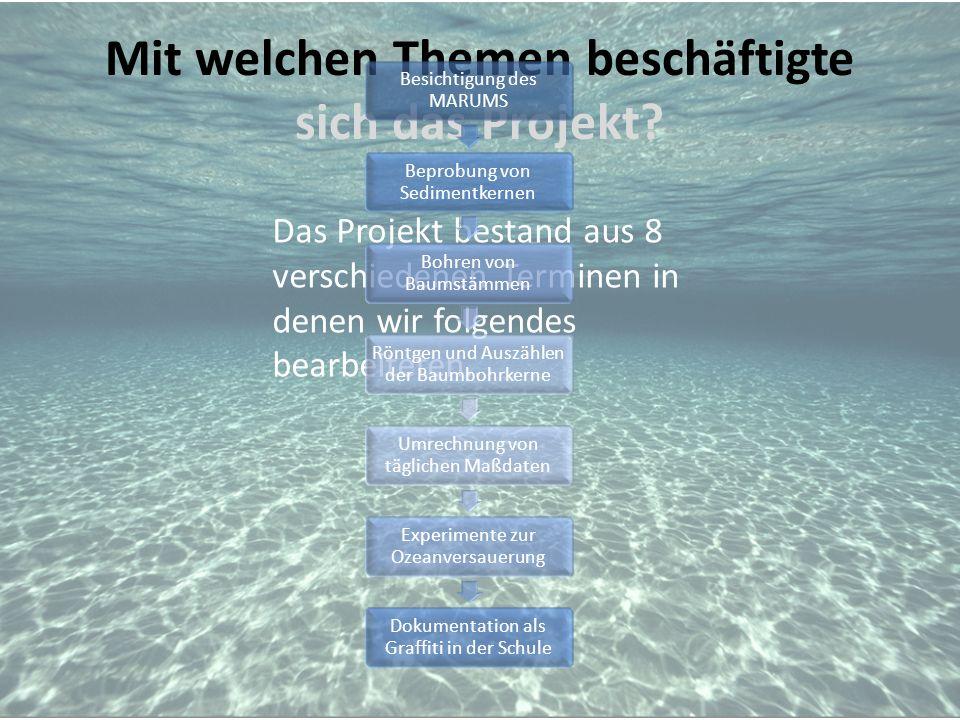 Mit welchen Themen beschäftigte sich das Projekt? Das Projekt bestand aus 8 verschiedenen Terminen in denen wir folgendes bearbeiteten.. Besichtigung