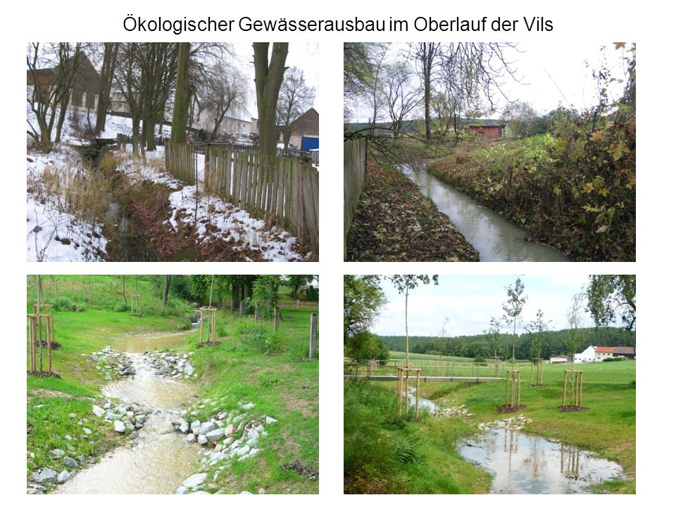 Ökologische Aufwertung der Vilsquelle und der Vils Mit der Maßnahme wird sowohl die Quelle, als auch der Oberlauf des bedeutendsten Flusses im Landkreis Amberg Sulzbach auf einer Länge von ca.