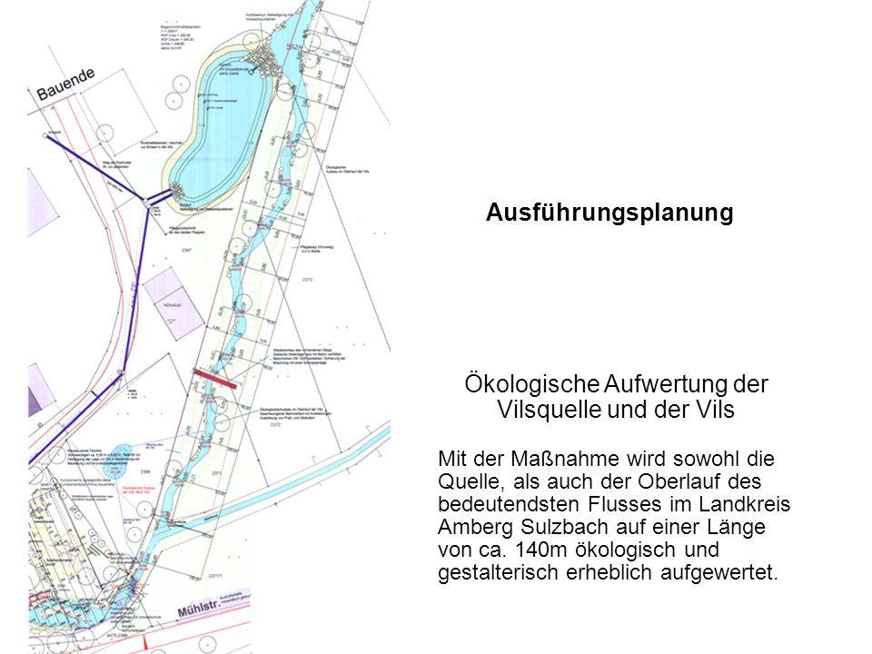 Ökologische Aufwertung der Vilsquelle und der Vils Mit der Maßnahme wird sowohl die Quelle, als auch der Oberlauf des bedeutendsten Flusses im Landkre