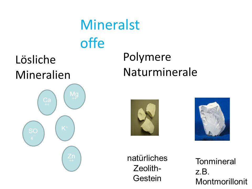 Ergebnisse eines Test-Versuches in Antalya Ziplana 10 % Ziplana 5 %DüngerKontrolle Quelle: Rota mining GmbH Komponente 1: Polymeres Geomineral aus natürlichen Lagerstätten: Zeolith Zeolithe sind nicht in Wasser dispergierbar und daher zum Coaten ungeeignet Mineralkomposite als Coating-Material für Samen