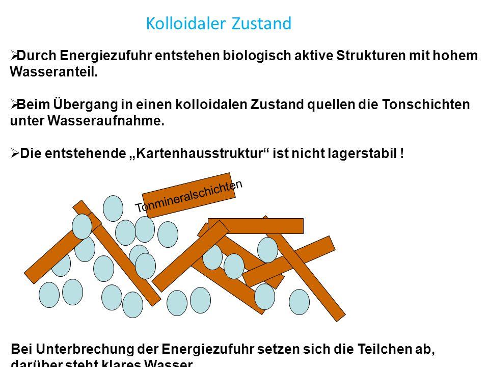  Durch Energiezufuhr entstehen biologisch aktive Strukturen mit hohem Wasseranteil.