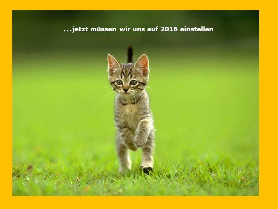 … jetzt müssen wir uns auf 2016 einstellen
