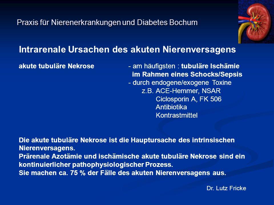 Praxis für Nierenerkrankungen und Diabetes Bochum Dr. Lutz Fricke Intrarenale Ursachen des akuten Nierenversagens akute tubuläre Nekrose- am häufigste