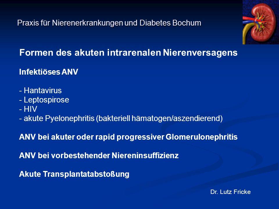 Praxis für Nierenerkrankungen und Diabetes Bochum Dr. Lutz Fricke Formen des akuten intrarenalen Nierenversagens Infektiöses ANV - Hantavirus - Leptos