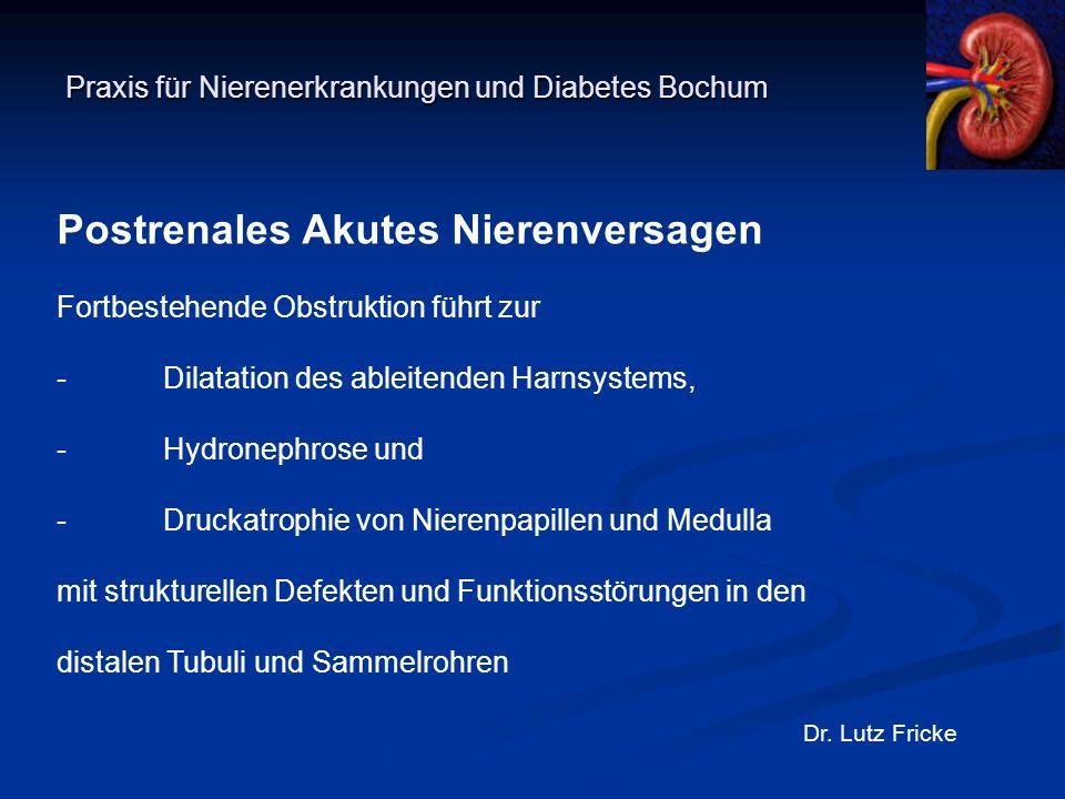 Praxis für Nierenerkrankungen und Diabetes Bochum Dr. Lutz Fricke Postrenales Akutes Nierenversagen Fortbestehende Obstruktion führt zur -Dilatation d