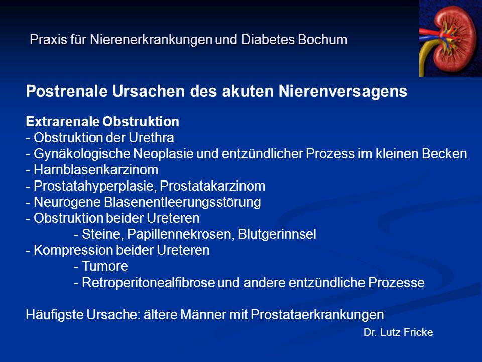 Praxis für Nierenerkrankungen und Diabetes Bochum Dr. Lutz Fricke Postrenale Ursachen des akuten Nierenversagens Extrarenale Obstruktion - Obstruktion