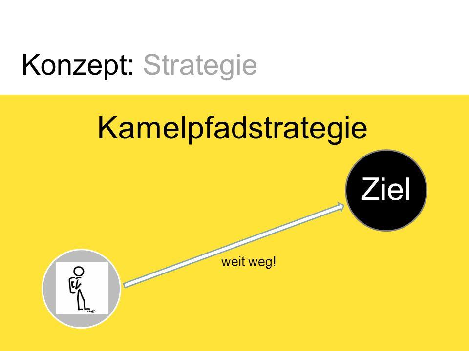Konzept: Strategie Kamelpfadstrategie Start Ziel Oase kleine Umwege verkürzen den Weg!
