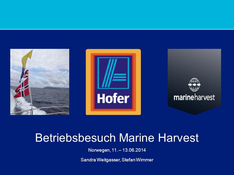 1 Betriebsbesuch Marine Harvest Norwegen, 11. – 13.06.2014 Sandra Weitgasser, Stefan Wimmer