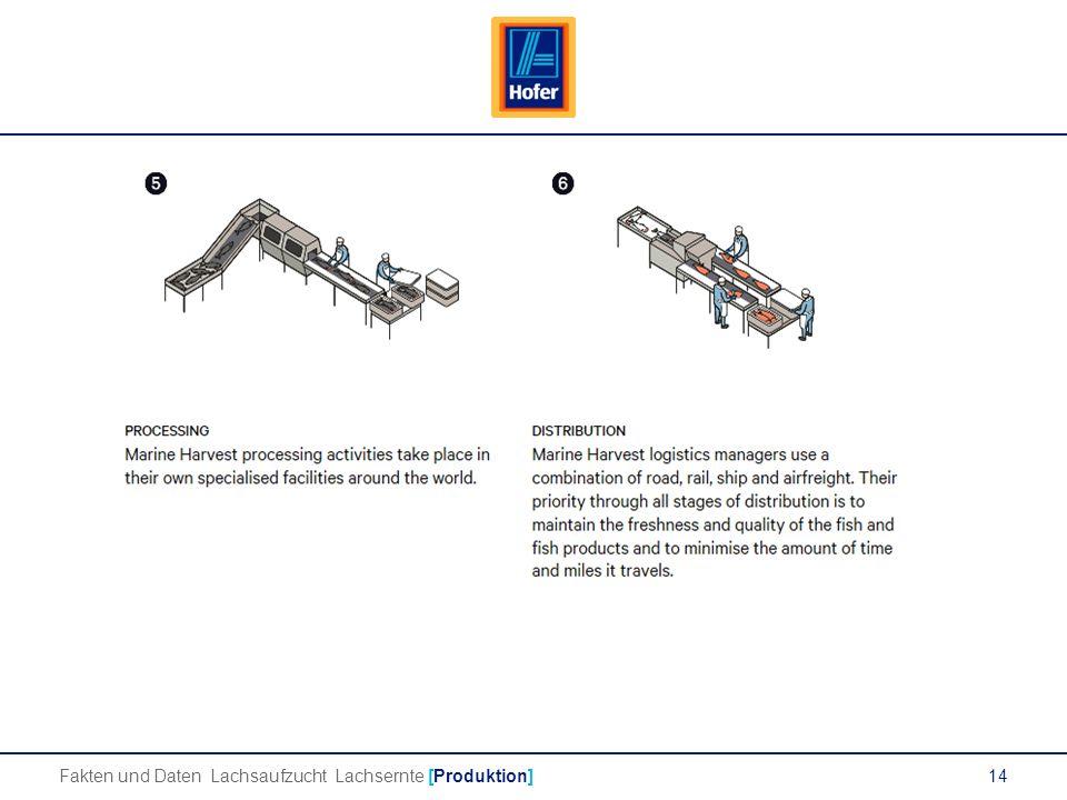 14 Lachs Fakten und Daten Lachsaufzucht Lachsernte [Produktion]