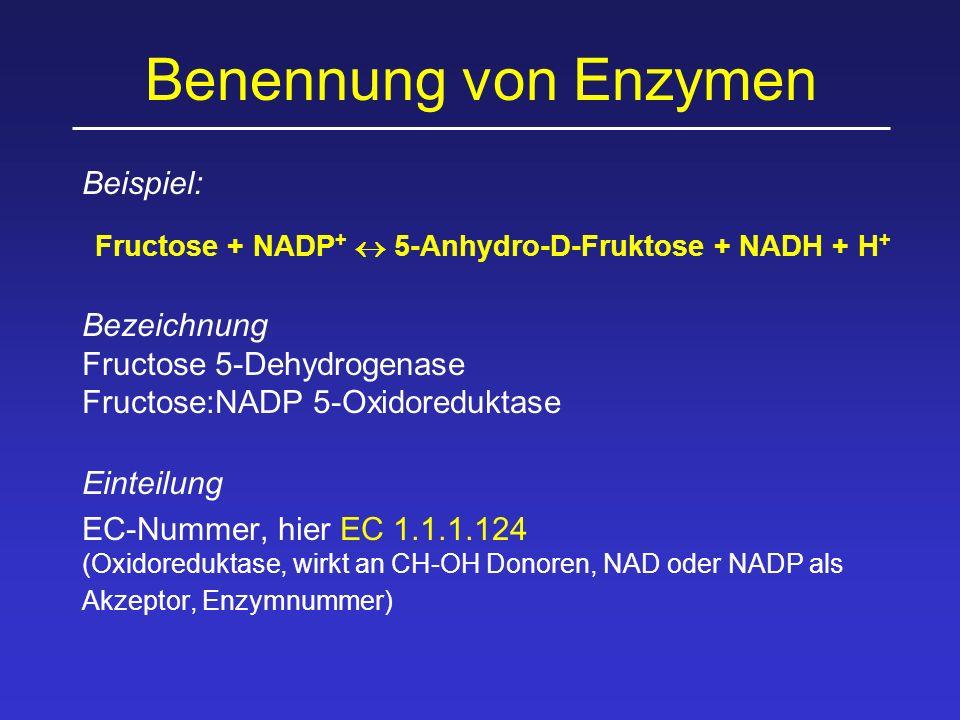 Benennung von Enzymen Beispiel: Fructose + NADP +  5-Anhydro-D-Fruktose + NADH + H + Bezeichnung Fructose 5-Dehydrogenase Fructose:NADP 5-Oxidoreduktase Einteilung EC-Nummer, hier EC 1.1.1.124 (Oxidoreduktase, wirkt an CH-OH Donoren, NAD oder NADP als Akzeptor, Enzymnummer)