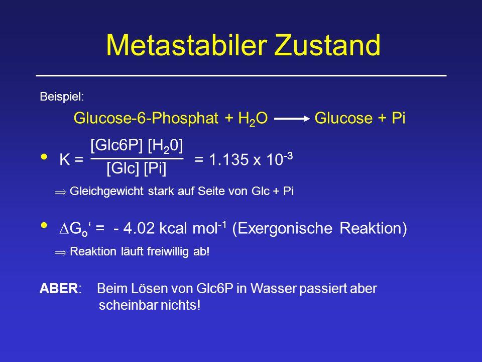 Metastabiler Zustand Beispiel: Glucose-6-Phosphat + H 2 OGlucose + Pi [Glc6P] [H 2 0] [Glc] [Pi] K = = 1.135 x 10 -3  Gleichgewicht stark auf Seite von Glc + Pi  G o ' = - 4.02 kcal mol -1 (Exergonische Reaktion)  Reaktion läuft freiwillig ab.