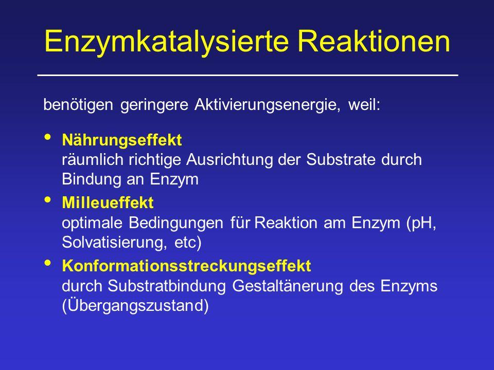 Enzymkatalysierte Reaktionen benötigen geringere Aktivierungsenergie, weil: Nährungseffekt räumlich richtige Ausrichtung der Substrate durch Bindung an Enzym Milleueffekt optimale Bedingungen für Reaktion am Enzym (pH, Solvatisierung, etc) Konformationsstreckungseffekt durch Substratbindung Gestaltänerung des Enzyms (Übergangszustand)