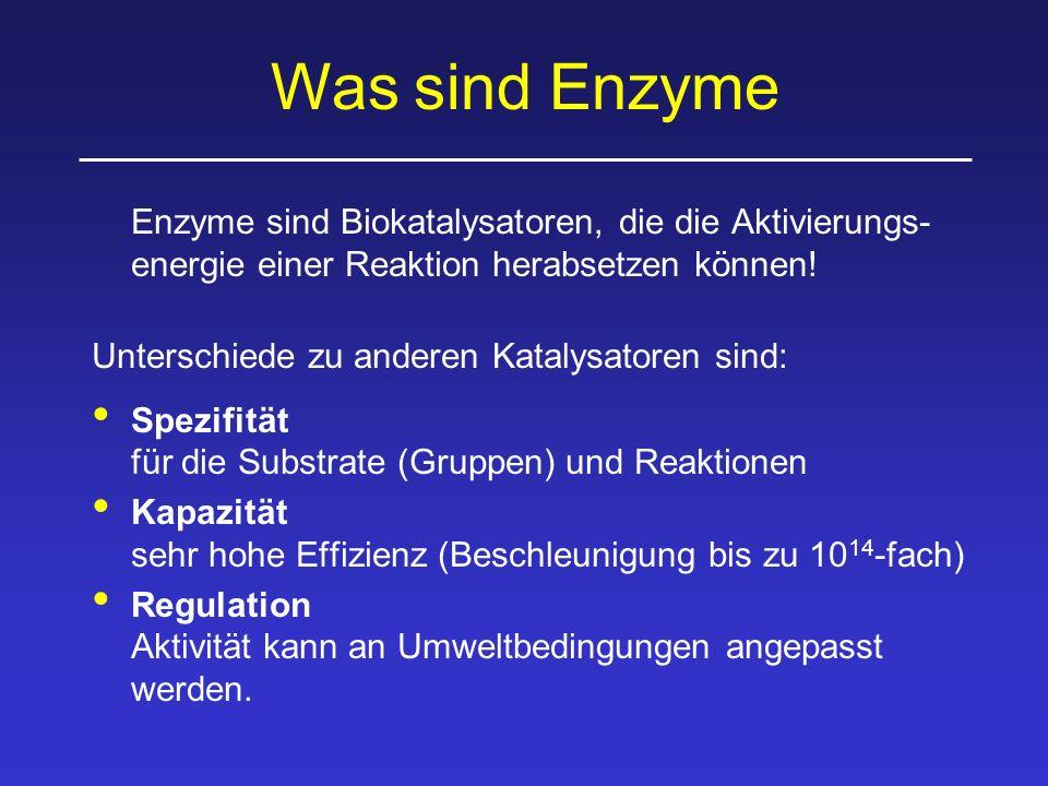 Was sind Enzyme Enzyme sind Biokatalysatoren, die die Aktivierungs- energie einer Reaktion herabsetzen können! Unterschiede zu anderen Katalysatoren s
