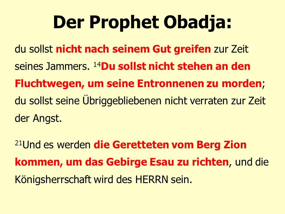 Der Prophet Obadja: du sollst nicht nach seinem Gut greifen zur Zeit seines Jammers.