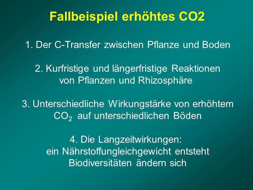 1. Der C-Transfer zwischen Pflanze und Boden 2. Kurfristige und längerfristige Reaktionen von Pflanzen und Rhizosphäre 3. Unterschiedliche Wirkungstär