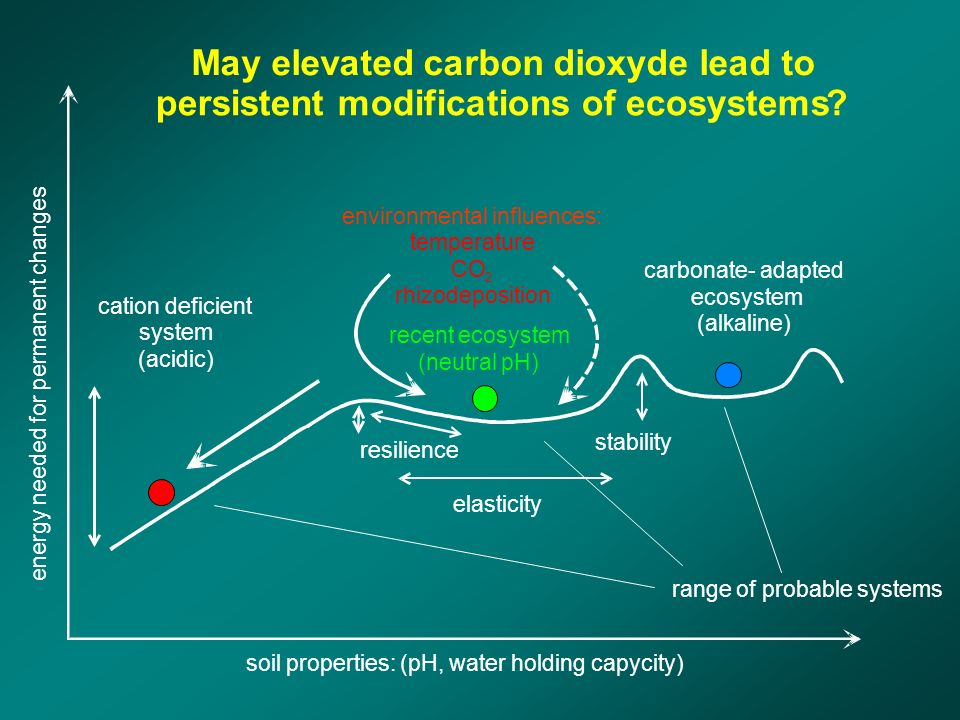 range of probable systems elasticity stability recent ecosystem (neutral pH) environmental influences: temperature CO 2 rhizodeposition May elevated carbon dioxyde lead to persistent modifications of ecosystems.