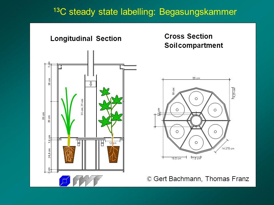 LongitudinalSection 89 cm 24,4 cm 1,6 cm 30 cm 1 cm 2 cm 51 cm, 21 cm 12 cm 55 cm 9,25 cm 19,5 cm 7,5 cm 1,5 cm 10 cm 14,375 cm Cross Section Soil com