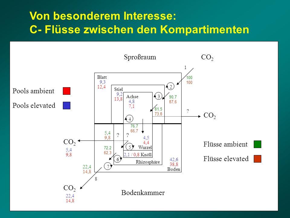 Von besonderem Interesse: C- Flüsse zwischen den Kompartimenten Blatt Stiel Achse Wurzel Rhizosphäre Boden 1 2 3 4 5 6 7 CO 2 Sproßraum Bodenkammer Kn
