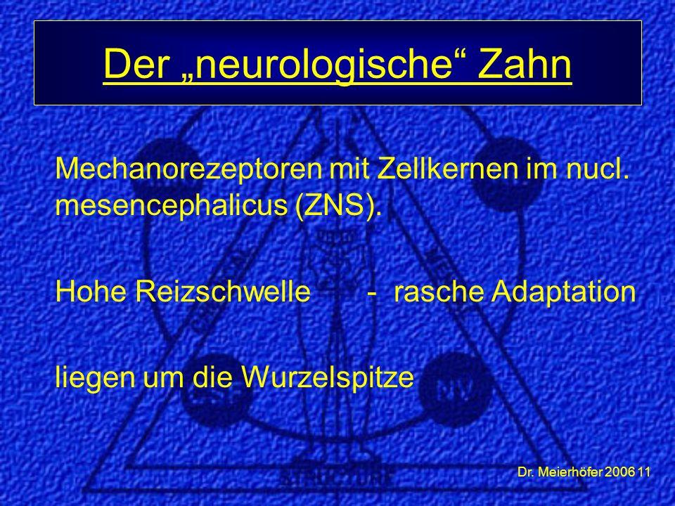 Dr. Meierhöfer 2006 11 Mechanorezeptoren mit Zellkernen im nucl. mesencephalicus (ZNS). Hohe Reizschwelle - rasche Adaptation liegen um die Wurzelspit