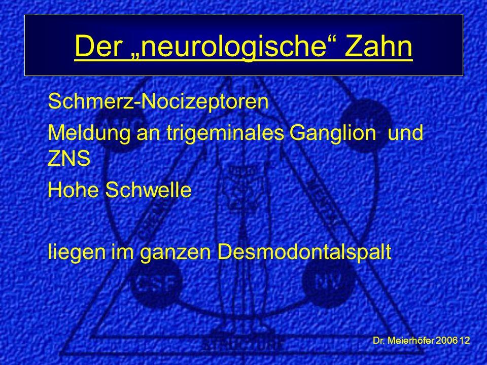"""Dr. Meierhöfer 2006 12 Schmerz-Nocizeptoren Meldung an trigeminales Ganglion und ZNS Hohe Schwelle liegen im ganzen Desmodontalspalt Der """"neurologisch"""