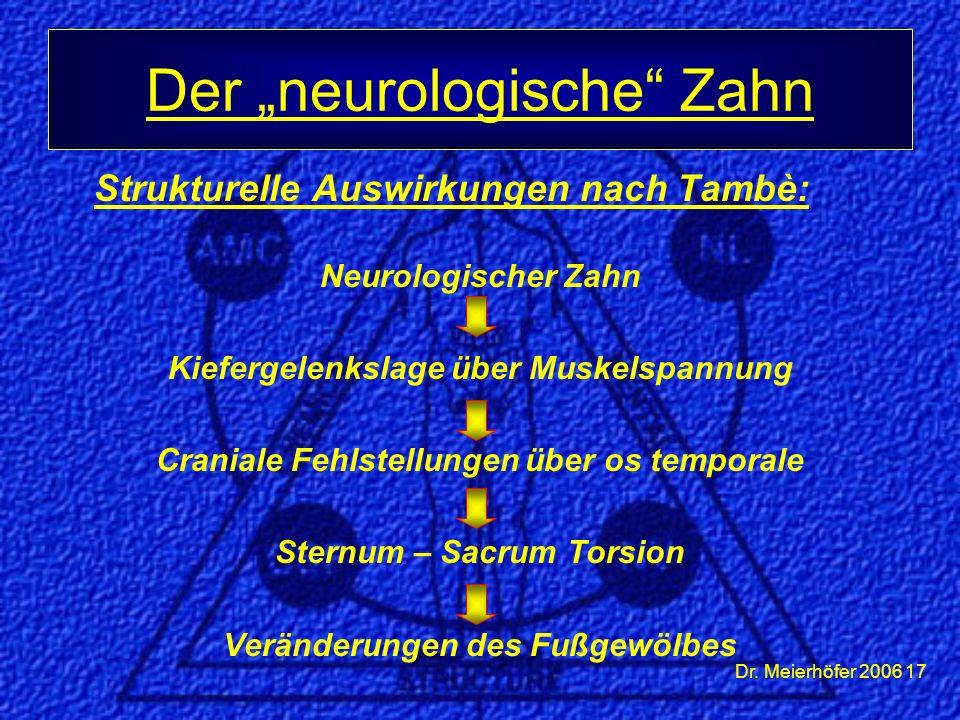 Dr. Meierhöfer 2006 17 Strukturelle Auswirkungen nach Tambè: Neurologischer Zahn Kiefergelenkslage über Muskelspannung Craniale Fehlstellungen über os