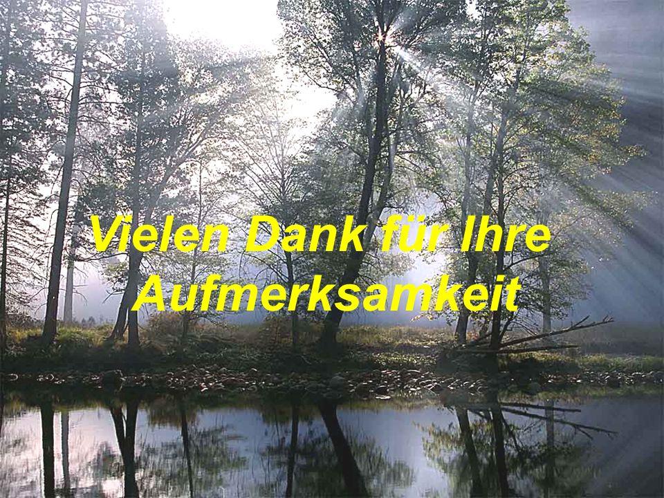 Dr. Meierhöfer 2006 28 Vielen Dank für Ihre Aufmerksamkeit