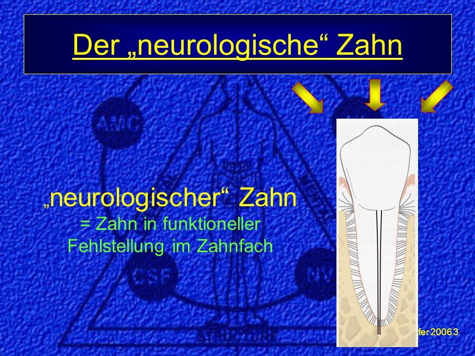 """Dr. Meierhöfer 2006 3 Der """"neurologische"""" Zahn """" neurologischer"""" Zahn = Zahn in funktioneller Fehlstellung im Zahnfach"""