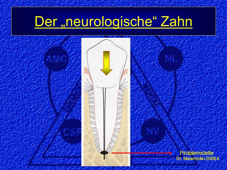 """Dr. Meierhöfer 2006 5 Der """"neurologische Zahn Problemstelle"""