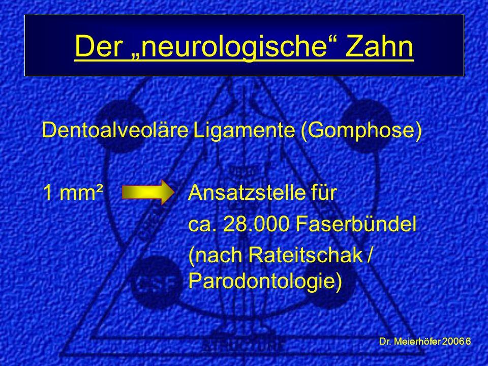 """Dr. Meierhöfer 2006 6 Dentoalveoläre Ligamente (Gomphose) 1 mm²Ansatzstelle für ca. 28.000 Faserbündel (nach Rateitschak / Parodontologie) Der """"neurol"""