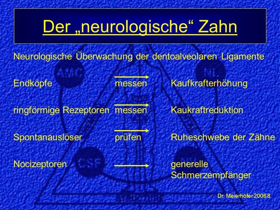 Dr. Meierhöfer 2006 9