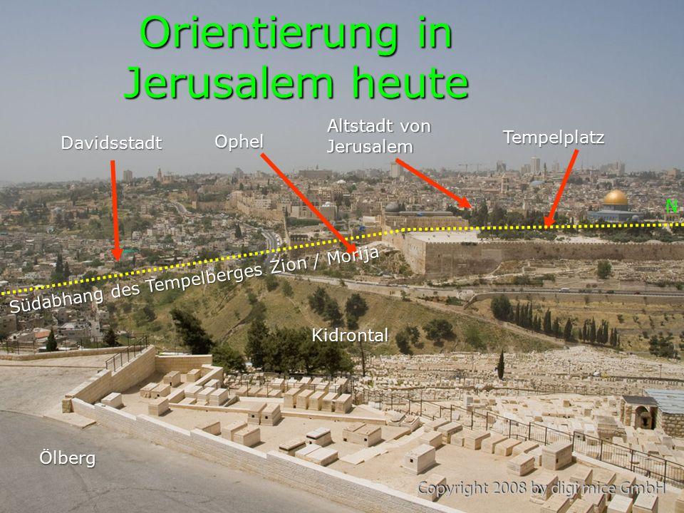 RL Neh 2,17: Ihr seht das Unglück, in welchem wir sind, daß Jerusalem wüst liegt und seine Tore mit Feuer verbrannt sind.