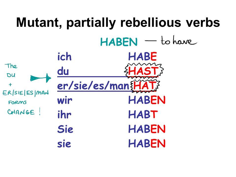Mutant, partially rebellious verbs HABEN ich HABE duHAST er/sie/es/man HAT wirHABEN ihrHABT SieHABEN sieHABEN