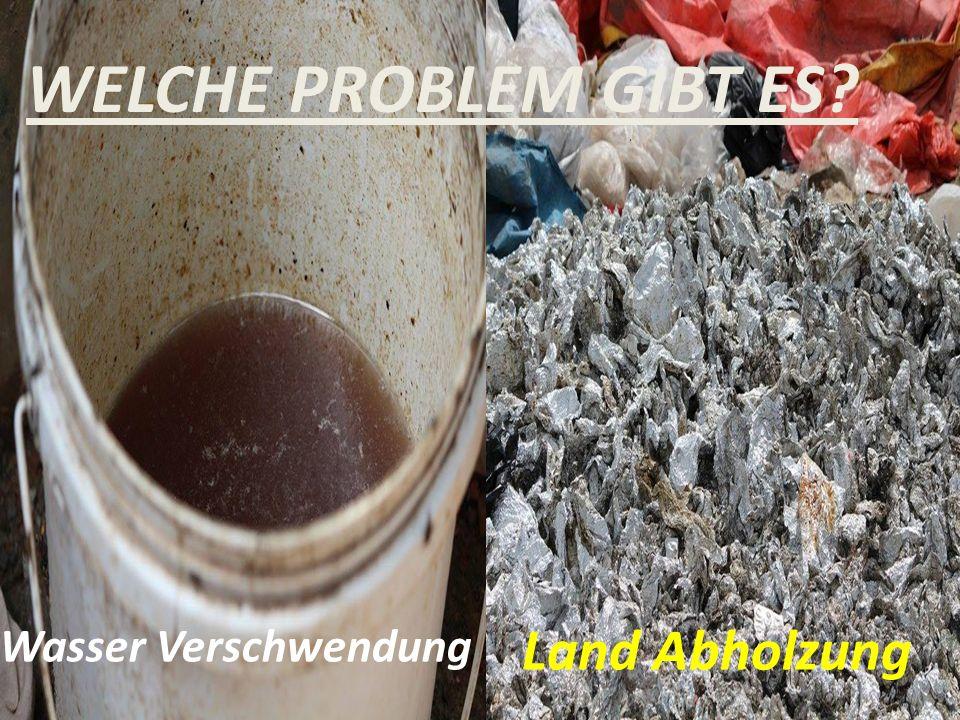 Wasser Verschwendung Land Abholzung WELCHE PROBLEM GIBT ES?