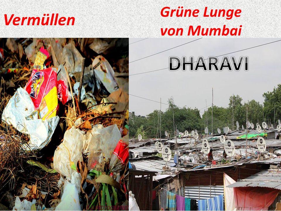 Vermüllen Grüne Lunge von Mumbai