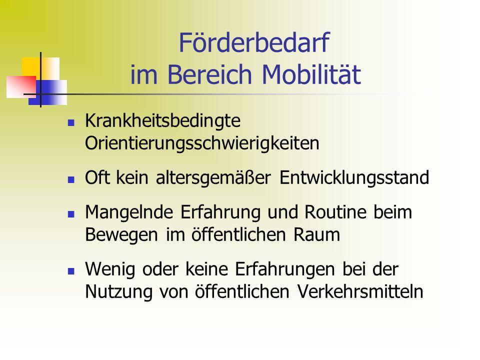 Förderbedarf im Bereich Mobilität Krankheitsbedingte Orientierungsschwierigkeiten Oft kein altersgemäßer Entwicklungsstand Mangelnde Erfahrung und Routine beim Bewegen im öffentlichen Raum Wenig oder keine Erfahrungen bei der Nutzung von öffentlichen Verkehrsmitteln
