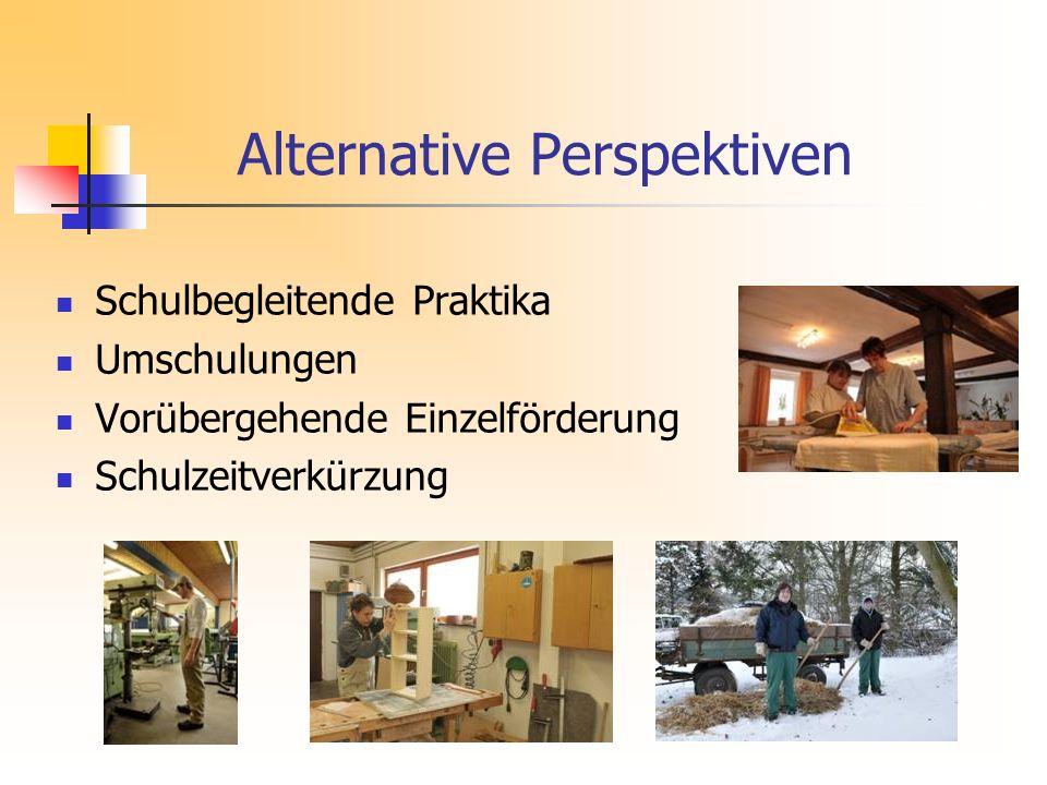 Alternative Perspektiven Schulbegleitende Praktika Umschulungen Vorübergehende Einzelförderung Schulzeitverkürzung