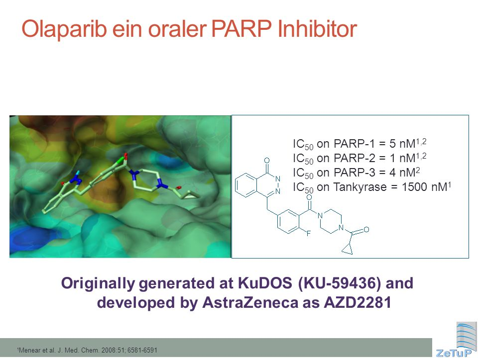 Originally generated at KuDOS (KU-59436) and developed by AstraZeneca as AZD2281 IC 50 on PARP-1 = 5 nM 1,2 IC 50 on PARP-2 = 1 nM 1,2 IC 50 on PARP-3